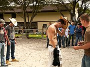 Naked pig chasing, naked bareback racing, and naked paintball... yeeeee hawww gay leather groups